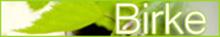 Wenn Sie hier klicken, öffnet sich die Birken-Seite