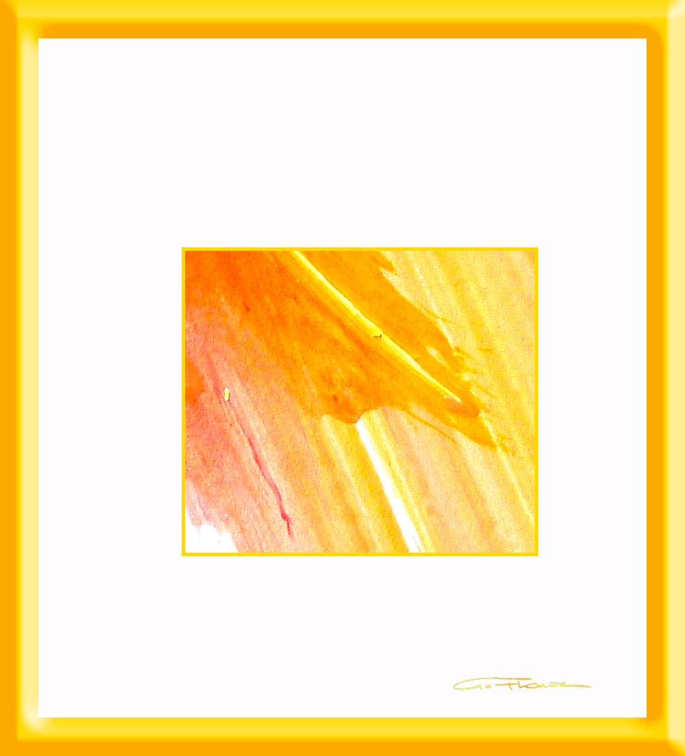 img774o.orangefirst980m1082px