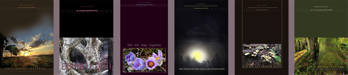 pictureline 03 - Kunstpostkarten von Günther Floner 2018