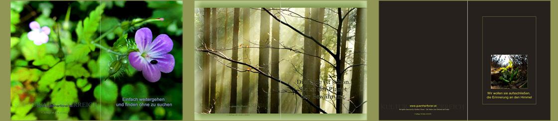 pictureline 04 - 3 Kunstpostkarten