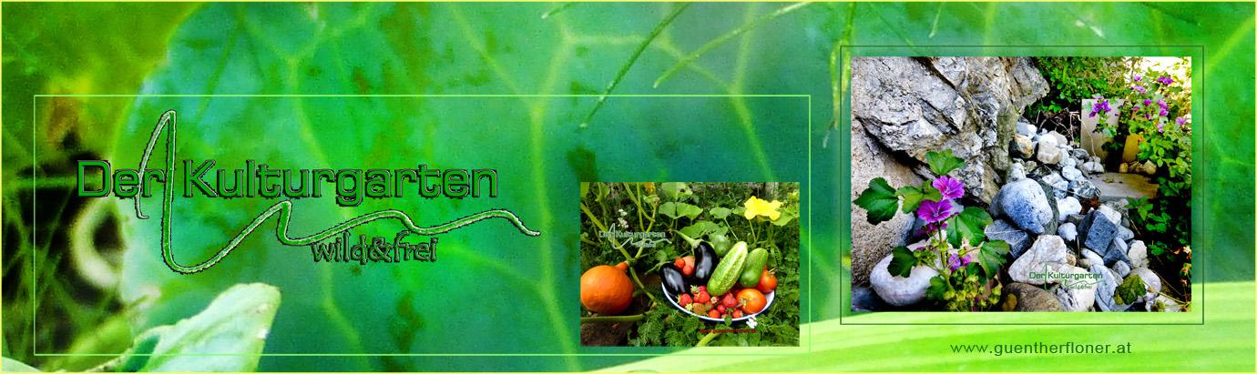 Der Kulturgarten - wild und frei - pictureline 01