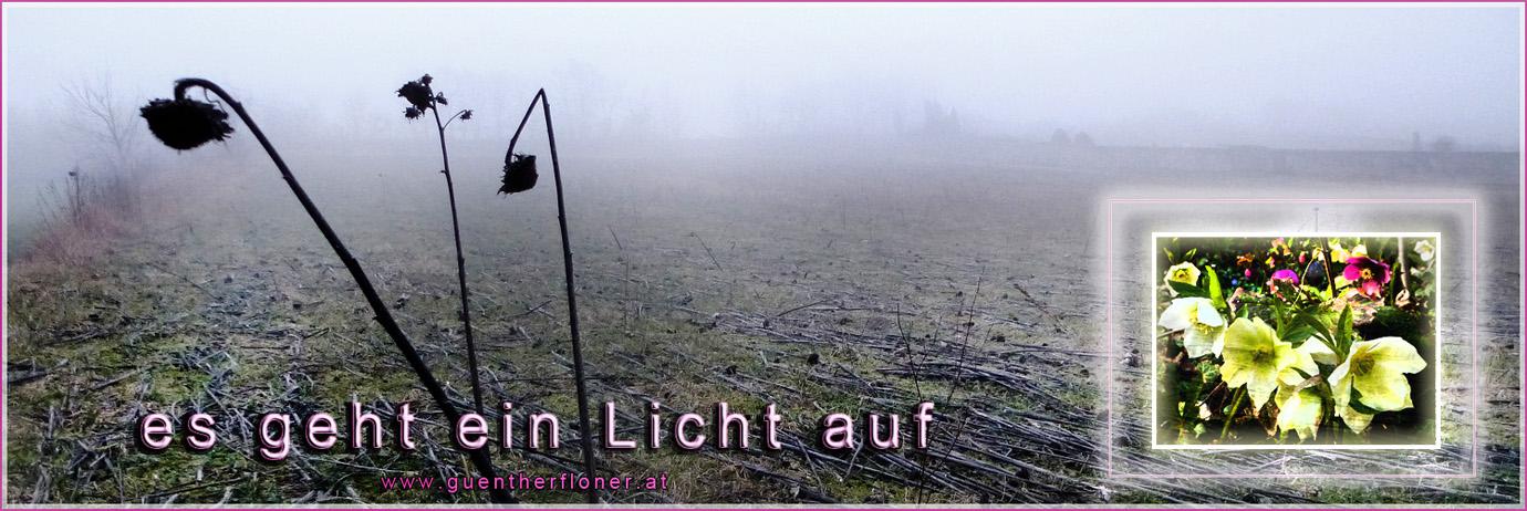 Augenblicke - pictureline 04 - Ein Licht geht auf